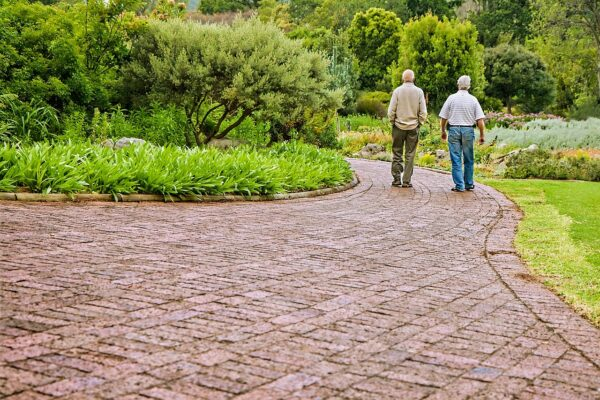 two elderly men walking through a park